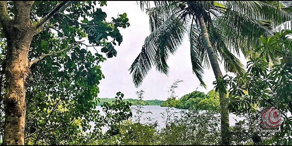 Riverfront land for sale in Dodanduwa
